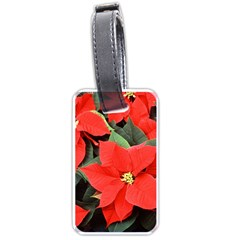 Poinsettia Luggage Tags (one Side)  by trendistuff