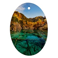 Jiuzhaigou Valley 1 Ornament (oval)