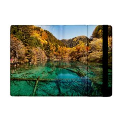 Jiuzhaigou Valley 1 Apple Ipad Mini Flip Case by trendistuff