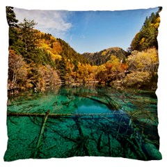 Jiuzhaigou Valley 1 Large Flano Cushion Cases (two Sides)  by trendistuff