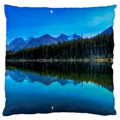 Herbert Lake Large Cushion Cases (two Sides)  by trendistuff