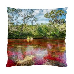 Cano Cristales 3 Standard Cushion Cases (two Sides)  by trendistuff