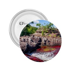 Cano Cristales 2 2 25  Buttons by trendistuff