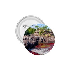 Cano Cristales 2 1 75  Buttons by trendistuff