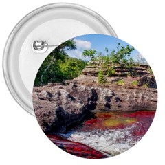 Cano Cristales 2 3  Buttons by trendistuff