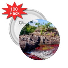 Cano Cristales 2 2 25  Buttons (100 Pack)  by trendistuff