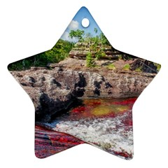 Cano Cristales 2 Star Ornament (two Sides)  by trendistuff