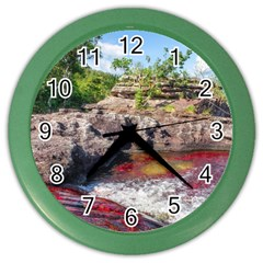 Cano Cristales 2 Color Wall Clocks