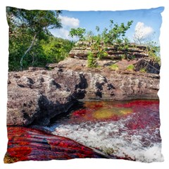 Cano Cristales 2 Large Cushion Cases (two Sides)  by trendistuff
