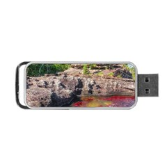 Cano Cristales 2 Portable Usb Flash (two Sides) by trendistuff