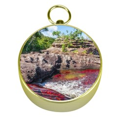 Cano Cristales 2 Gold Compasses by trendistuff