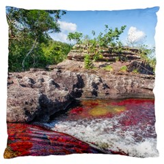 Cano Cristales 2 Large Flano Cushion Cases (one Side)  by trendistuff