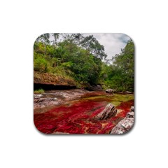 Cano Cristales 1 Rubber Square Coaster (4 Pack)  by trendistuff