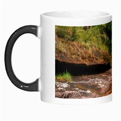 Cano Cristales 1 Morph Mugs by trendistuff