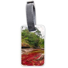 Cano Cristales 1 Luggage Tags (two Sides) by trendistuff