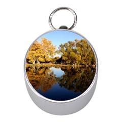 Autumn Lake Mini Silver Compasses by trendistuff