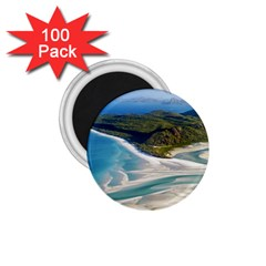 Whitehaven Beach 1 1 75  Magnets (100 Pack)  by trendistuff