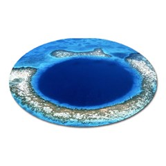 Great Blue Hole 2 Oval Magnet by trendistuff