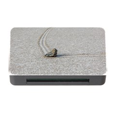 Sailing Stones Memory Card Reader With Cf by trendistuff