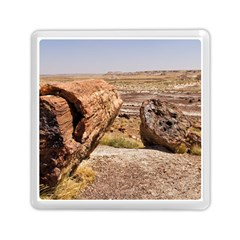 Petrified Desert Memory Card Reader (square)  by trendistuff