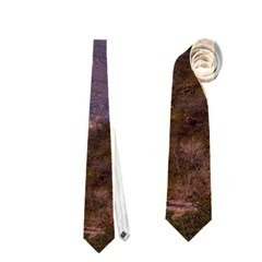 Zion National Park Neckties (two Side)  by trendistuff