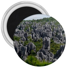 Stone Forest 1 3  Magnets by trendistuff