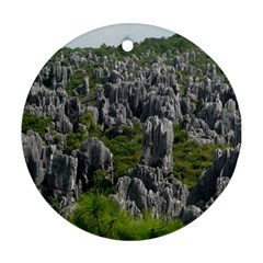 Stone Forest 1 Ornament (round)  by trendistuff