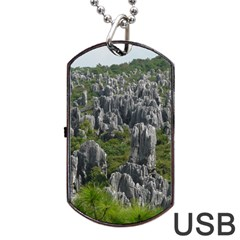 Stone Forest 1 Dog Tag Usb Flash (two Sides)  by trendistuff