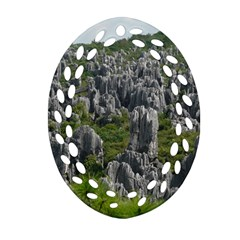 Stone Forest 1 Oval Filigree Ornament (2 Side)  by trendistuff