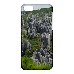 Stone Forest 1 Apple Iphone 5c Hardshell Case by trendistuff