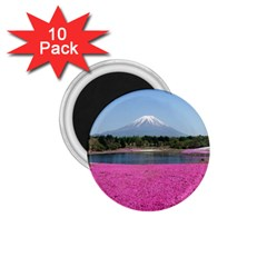 Shibazakura 1 75  Magnets (10 Pack)  by trendistuff
