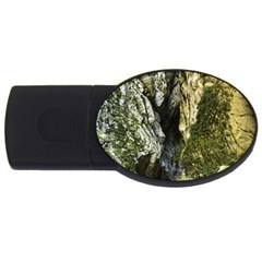 Mountain Path Usb Flash Drive Oval (4 Gb)  by trendistuff