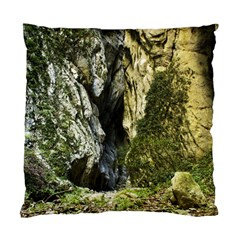 Mountain Path Standard Cushion Cases (two Sides)  by trendistuff