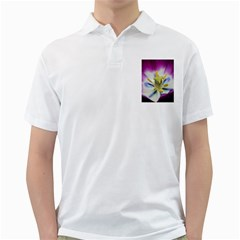 Purple Beauty Golf Shirts by timelessartoncanvas