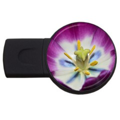 Purple Beauty Usb Flash Drive Round (2 Gb)  by timelessartoncanvas