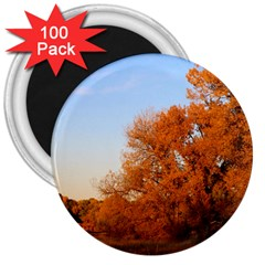 Beautiful Autumn Day 3  Magnets (100 Pack)
