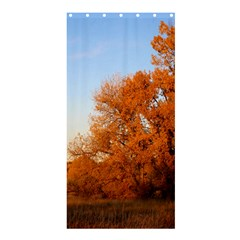 Beautiful Autumn Day Shower Curtain 36  X 72  (stall)
