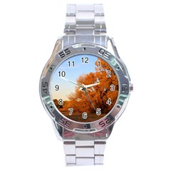 Beautiful Autumn Day Stainless Steel Men s Watch by trendistuff
