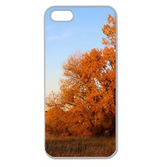 Beautiful Autumn Day Apple Seamless Iphone 5 Case (clear) by trendistuff