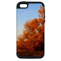 Beautiful Autumn Day Apple Iphone 5 Hardshell Case (pc+silicone) by trendistuff