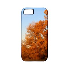 Beautiful Autumn Day Apple Iphone 5 Classic Hardshell Case (pc+silicone) by trendistuff