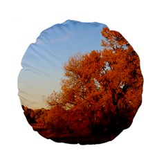 Beautiful Autumn Day Standard 15  Premium Round Cushions by trendistuff