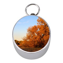 Beautiful Autumn Day Mini Silver Compasses by trendistuff