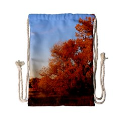 Beautiful Autumn Day Drawstring Bag (small) by trendistuff