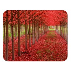 Avenue Of Trees Double Sided Flano Blanket (large)
