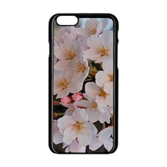 Sakura Apple Iphone 6/6s Black Enamel Case