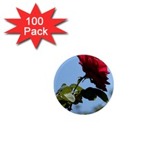 Red Rose 2 1  Mini Magnets (100 Pack)  by trendistuff