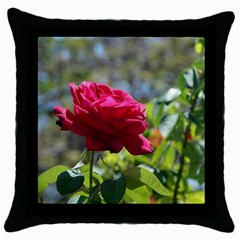 Red Rose 1 Throw Pillow Cases (black) by trendistuff