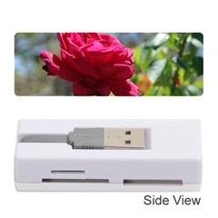Red Rose 1 Memory Card Reader (stick)  by trendistuff