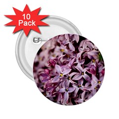 Purple Lilacs 2 25  Buttons (10 Pack)  by trendistuff